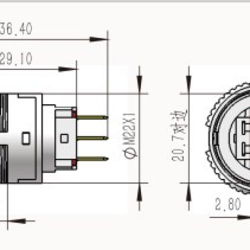 L22F-11M-A IP67 Momentary Push Switch