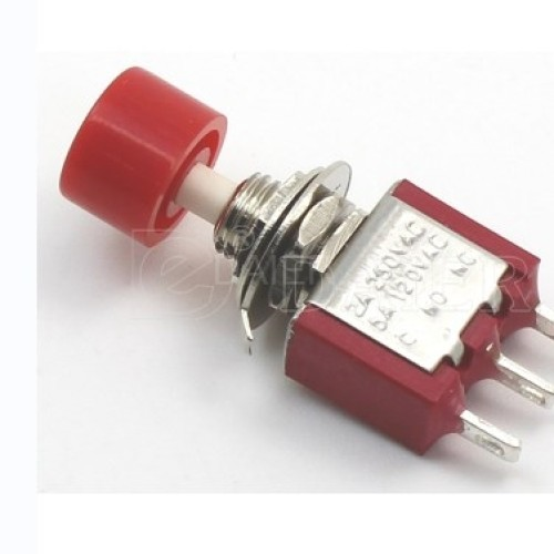 DS-612 Mounting Hole Switch with Head